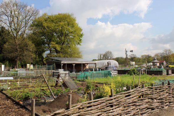Zonhoven (L.) De Hoev - Alg. overzicht foto Addy Bakx