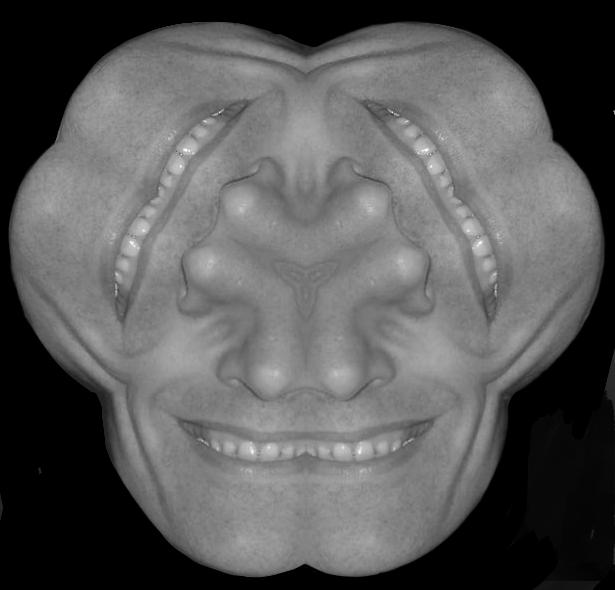 Fotomontage van het gezicht van Hans van Dam met drie monden en zes neuzen.